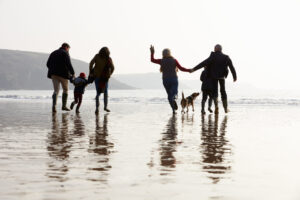 Thing To Do In North Devon Half Term
